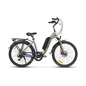 """Argento Omega, Bicicletta Elettrica City Bike, Assicurazione AXA """"Tutela Famiglia"""" inclusa, Ruote Kenda 26'', Unisex, Argento, Telaio 44 cm"""