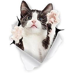 Winston & Bear Autocollants Chat Muraux 3D - Paquet de 2 - Autocollants Décoratifs Drole - Stickers Tuxedo Chat Noir et Blanc Pour Mur - Frigo - Toilette - Salle - Voiture - Réfrigérateur
