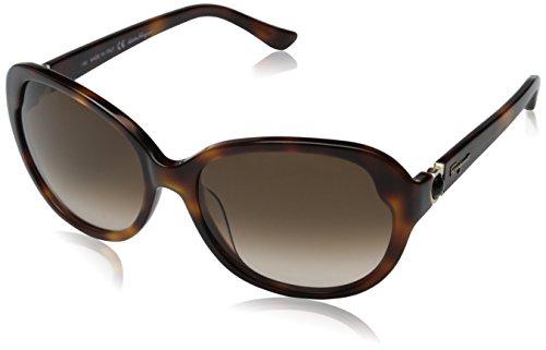 salvatore-ferragamo-sf708s-sunglasses-214-tortoise-57-17-130
