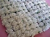 144pc Maulbeer-Papier 1/2Rose Blume mit Stiel (weiß) von www.embellishmentworld.com