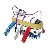 Bristlebot Kit – Mein erster Roboter I Miniroboter zum Selbst Bauen Do It Yourself Bürstenroboter mit Vibrations-Motor Robotik-Bausatz für Kinder