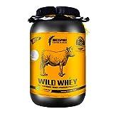 DREXSPORT - Wild Whey Protein Powder - Organic Supplement for Men and Women