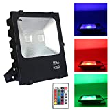 FROADP 100W RGB Farbwechsel LED Außen Strahler mit Fernbedienung Scheinwerfer - Fluter 4 Modi 16 Farben Sicherheitsleuchte -