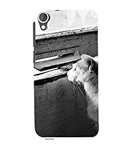 YuBingo HTC Desire 626G :: HTC Desire 626 Dual SIM :: HTC Desire 626S :: HTC Desire 626 USA :: HTC Desire 626G+ :: HTC Desire 626G Plus Designer Phone Back Case Cover ( Cat peeping from window )