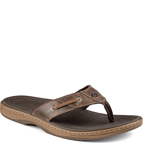 Männer Topsider Sperry Thong (Sperry Top-Sider Men's Baitfish Thong Fisherman Sandal, Brown, 8 M US)