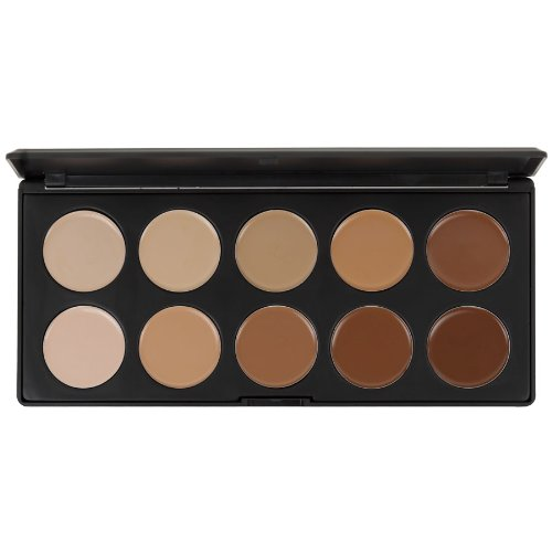 Blush Professional 10 Colour Concealer Palette