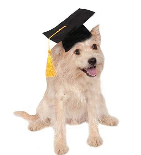 Vaycally Haustier Hund Katze Graduation Caps Bachelor Hut kleine Hund Graduation Hats Supplies Quaste Pet Graduation Kostüm für Hunde Katzen Urlaub Kostüm Zubehör - Haus Bachelor