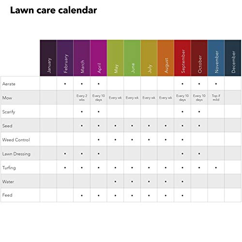 Zoom IMG-3 portal cool evergreen garden care