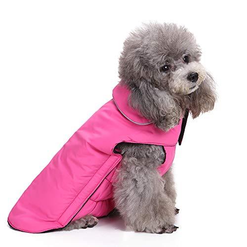 (Amphia - Haustier Hund elastische Jacke Mantel Kleidung,Haustier Hund Katze Welpen Winter warme Kleidung Kostüm Jacke Mantel Kleid(Rosa,L))