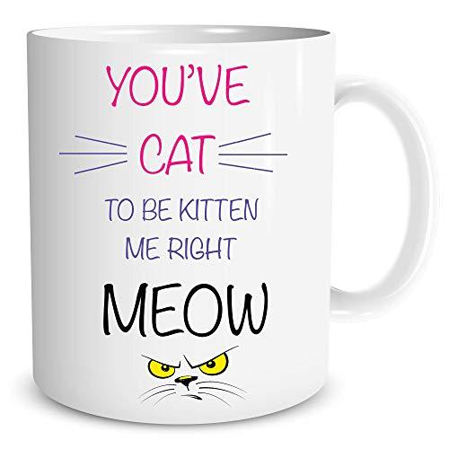 Katze Lady Becher Meow Kätzchen Zitat Lustig Neuheit-Scherz Tasse Geburtstag Geschenk WSDMUG118 -