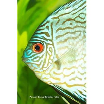 Poisson Discus Carnet de notes: Journal A5 ligné original de 119 pages- Une belle idée de cadeau pour les amoureux des animaux
