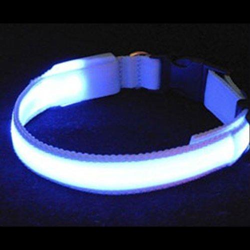 hundeinfo24.de BestOfferBuy 3 Betriebsarten Glasfaser Blinken LED Haustier Hund Halsband Klein blau