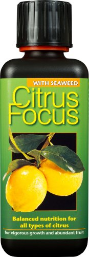 citrus-focus-balanced-liquid-concentrated-fertiliser-300ml