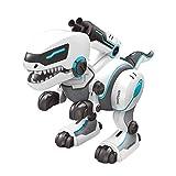 Robot De ContrôLe à Distance, Chshe TM, Jouet De Robot De ContrôLe Des Animaux Dinosaures Avec ContrôLe à Distance