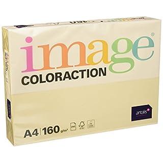 Coloraction 838A 160S 50 - Antalis Kopierpapier, DIN A4, 160 g/qm, Farbe: dune - creme