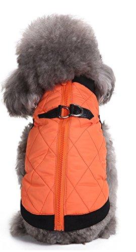 Haustier Kleidung Zip Jacke Amazon Explosive Winter Haustier Kleidung Baumwolle, orange, M ()