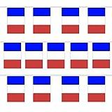 Trixes 9 Meter Lange Girlande im Design der französischen Flagge Trikolore Rot weiß Blau Sturm auf die Bastille Wimpelgirlande Dreieckige Bunting für Nationale Feierlichkeiten