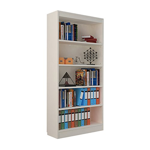 A10 Shop Alpha Bookcase & Storage Cabinet with 4 shelf, 67