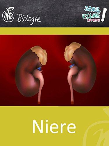 Niere - Schulfilm Biologie