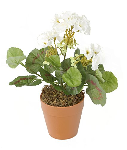closer-to-nature-hbc008we-geranio-zonal-artificial-24-cm-color-blanco