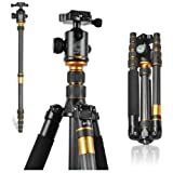 XCSOURCE Q-666C Profesional Photography Carbon Tripod Monopod Kit & Ball Head Compact Travel For DSLR Camera Canon Nikon Petax Sony LF375