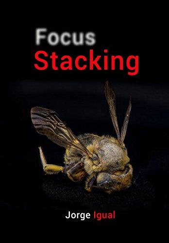 Focus Stacking: Profundidad de campo extendida (Técnicas fotográficas)