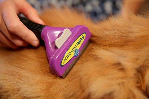 FURminator Fellpflege deShedding-Pflegewerkzeug für langhaarige große Katzen über 4,5 kg, Größe L, 1 Tool - 4