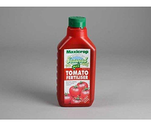 Engrais tomates de tomate alimentaire Maxicrop Engrais Plus pour tomates 1 l