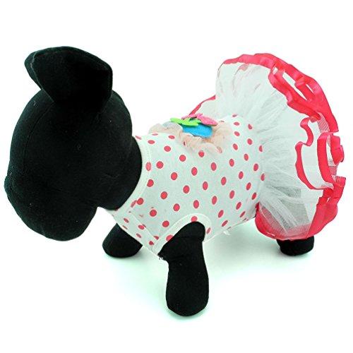 Zunea Chien Gilet Harnais Confortable en Maille Lot de Laisse rembourr/és Cute Dots Laisse Harnais pour Chaton Chiot et Petit Chien Filles