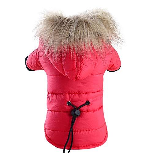 JKRTR Haustierkleidung 2019,Warme Daunenjacke aus Baumwolle Kostüm Winter Kleidung Hoodie Mäntel(Rot,XL)