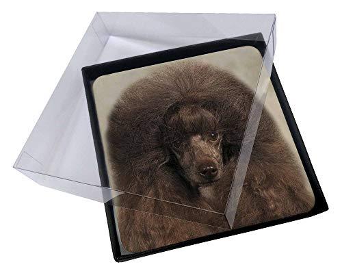 Advanta - Coaster Set 4X Schokoladen-Pudel- Hund Bild Setzer gesetzt -