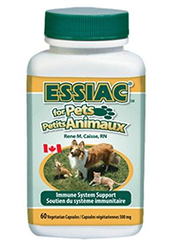 Essiac Animaux, Soutien du Système immunitaire, 60 Capsules (500mg)