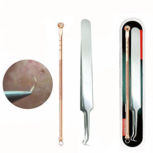 1set (2pezzi) professionale in acciaio inox Blackhead Ago Kit zit Pimple comedone Extractor Strumenti Kit per rimozione grasso Granulo con custodia in metallo per trattamento dell