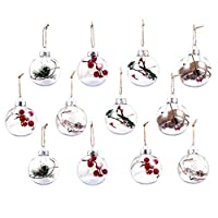 Toyvian 12Pcs Clear Plastic Balls Fillable Christmas Balls Plastic Ornaments Balls Christmas Candy Gift Box Party Supplies Christmas Tree Decoration