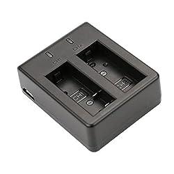 Portable Dual USB Slot Battery Charger for SJCAM SJ4000 SJ5000 Sports Camera