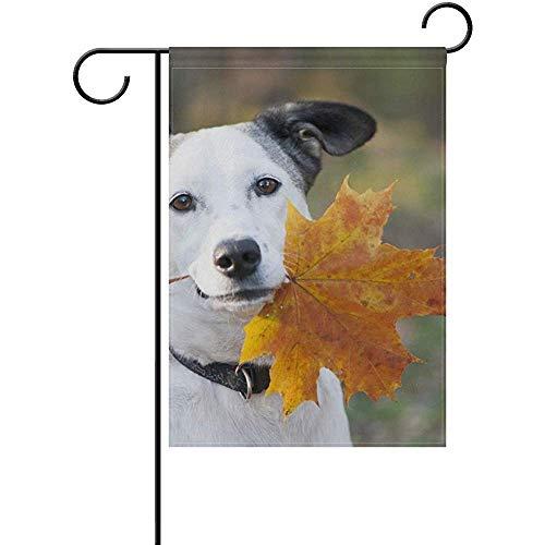 Mesllings Funny Dog Holding Leaf Garden Flagge Yard Banner Polyester for Home Flower Pot Outdoor Decor 12