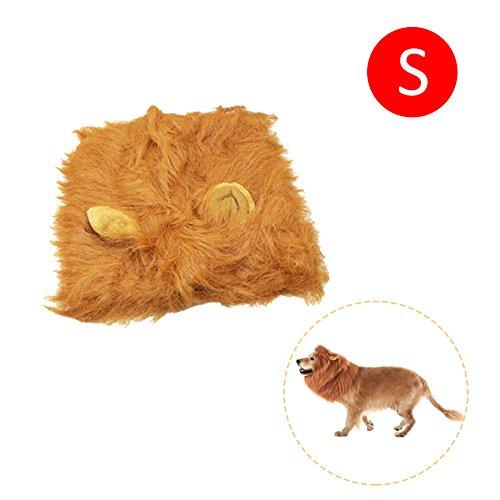 gaeruite Lion Mähne für Hund, Haustier Hund Kostüm Lion Mähne Perücke, Funny Dog Kostüm Lion Perücken Haarteil mit Schwanz, Weihnachten Halloween Kleidung Festival Fancy Dress - Löwen Kostüm Für Kleine Hunde