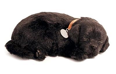Perfect Petzzz 65410 - Peluche interactivo de perro labrador (25 cm, efecto de respiración) de Perfect Petzzz