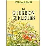 La guérison par les fleurs : Guéris-toi toi-même, les douze guérisseurs et autres remèdes