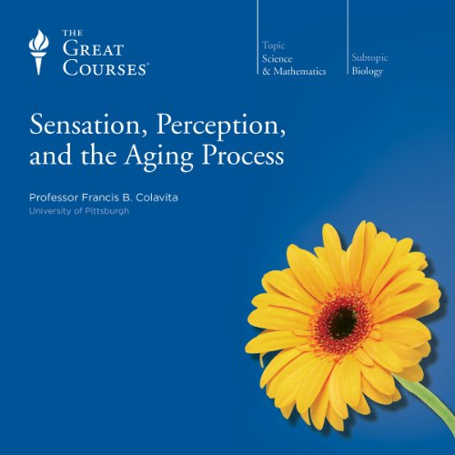 sensation-perception-and-the-aging-process