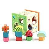 Steckwürfel aus Holz, Vicoki 10-teilig Holz Spielwürfel Bunte Puzzle Box Entwicklung Bildung Spielzeug, 16cm