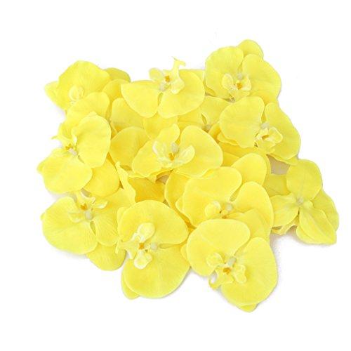 20x-Flor-Orqudea-Artificial-de-Pelo-Mueca-Decoracin-de-Boda-amarillo