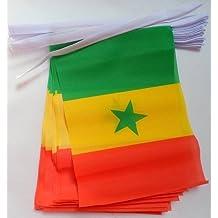 Runfon 10/x Mano Bandera Senegal Mano 14/x 21/cm