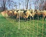 50m Euronetz Schafnetz Weidezaunnetz Weidenetz Geflügelnetz 90cm