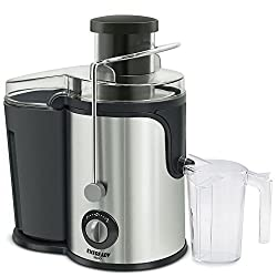 EVEREADY ELECTRIC JUICER J600 (600w)
