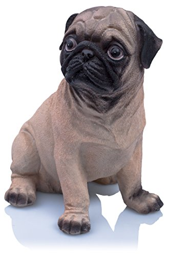 venkon-decorative-savings-box-puggy-bank-in-a-realistic-design-of-a-cute-pug-height-approx-20-cm