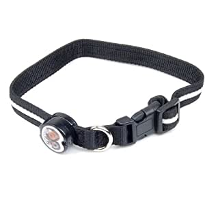 Pet Dog Nylon Safety Collar with Blue LED Flashing Light--One Switch Control and Bulit-In Changeable Battery