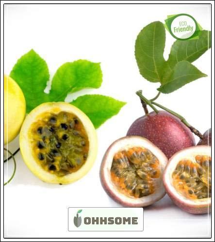 Pinkdose Fruchtsamen: Yelow Passionsfrucht Samen schnell Fruchtpflanzensamen Fruchtsamen Gemüsegarten-Pack-Seed