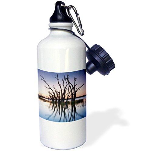 danita-delimont-australia-australia-murray-river-valley-lake-bonney-petrified-trees-sunset-21-oz-spo