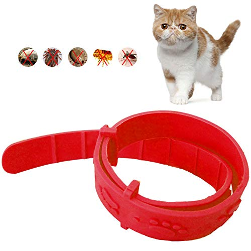Aubess Zecken- und Flohhalsband für Katzen, verstellbares, wasserdichtes Halsband für kleine Haustiere, natürliche sichere, wirksame Entfernung Flöhe, Läuse, Milben, Moskitos